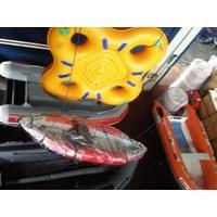 Jual Perahu Karet Achilles Zebec Rubber Boats Inflatable Boats