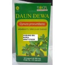 DAUN DEWA Gynura Procumbens Obat Herbal Murah