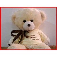 Jual Souvenir Ulang Tahun Teddy Bear