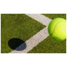 Rumput Sintetis Untuk Tennis Golf Baseball