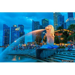 4D Sentosa & Wildlife Experience Only Rp. 5.480.000/Pax By QZ By Callista Tour