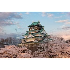 7D Japan ( Sakura Season ) From Rp.24.790.000/Orang  By Callista Tour