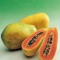 Sell fresh papaya