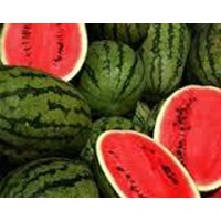 Semangka Segar