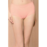 Jual Menstrual Panties (2 Pcs Set)