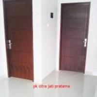 Pintu Panil Solit