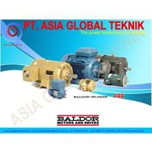 Baldor Motor