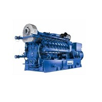 Jual Mwm Gas Engine