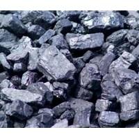Batu Bara- Coal