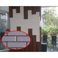Expose Brick Walls