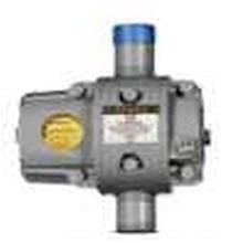 ROTARY GAS METER ROMET G25 2 Inchi NPT