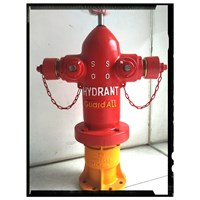Two Way Guardall Pillar Hydrant