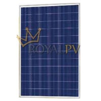 Jual SOLAR CELL 250WP RPV POLY