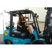 Baoli Forklift Promo