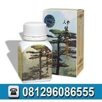 Obat Penggemuk Badan Alami Murah Info hub: 081296086555
