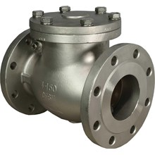 Check Valve Stainless Steel Sus304