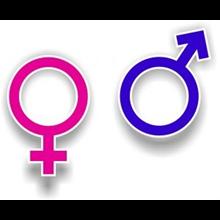 Alat Kesehatan Wanita Dildo