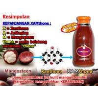 Jual Jamu dan Obat Alami Xamthone Plus Kulit manggis