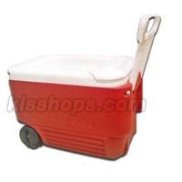 Dingin Igloo Kotak 36 Liter