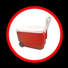 Cooler Box Igloo 45 Liter