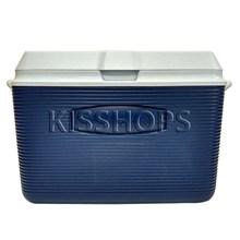 Box Pendingin 45.5 Liter