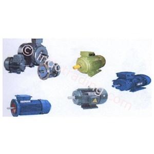 Three Induction Motors