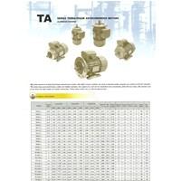 3 Phase Electro Motor Transmax