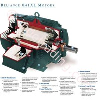 Jual Electric Motor Relience