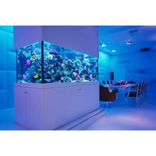 Kaca Aquarium