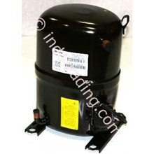 Compressor Bristol H2ng294 Dpef