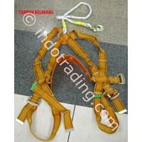 Jual Full Body Harness Fuji 2 Hook