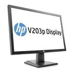HP V203p LED IPS 19.5