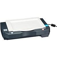 Scanner Flatbed Avision AVA6+