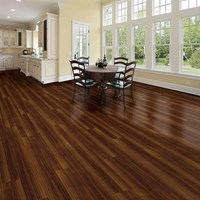 Vinlyl Floor
