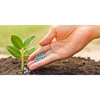 Fertilizers and Soil Additives