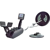 Mineral and Metal Detector