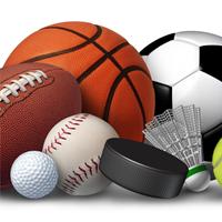 Team Sports Goods & Supplies