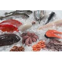Ikan Beku dan Fillet