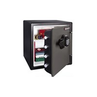 Electronic Safes & Security Systems