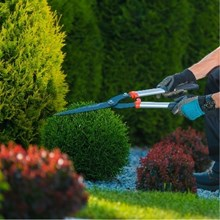Perawatan Taman dan Kebun
