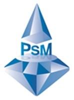 Logo PT. Permata Suksesindo Mandiri