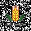 Surya Pratista Hutama