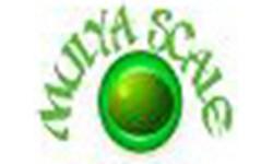 Logo CV. Mulya Scale