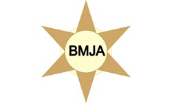 Logo Bintang Mas Jaya Abadi