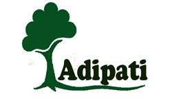 Adipati Jaya Abadi