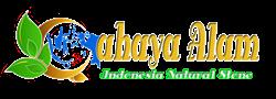 Logo UD. Adil