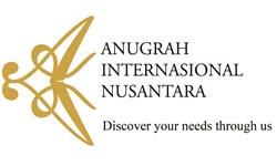 Anugrah Internasional Nusantara