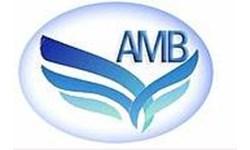 Logo CV. Anugerah Maju Bersama