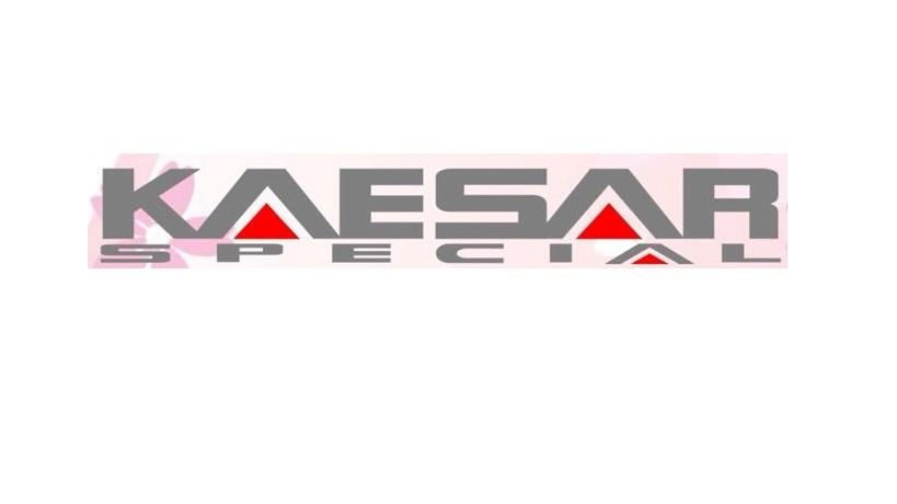 Logo CV. Sejahtera Sukses Abadi