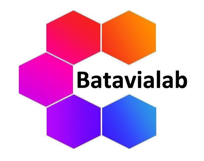 Logo PT. Mitra Batavia Semesta